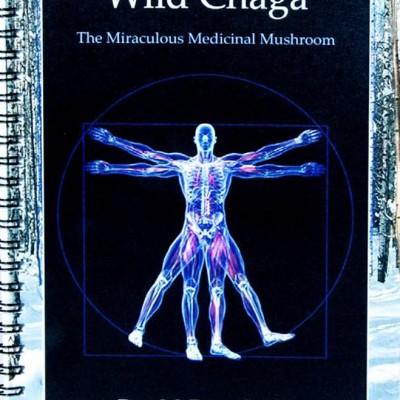 Wild Chaga- The Mirculous Medicinal Mushroom